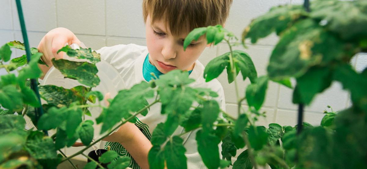 Recipe for a Successful School Garden