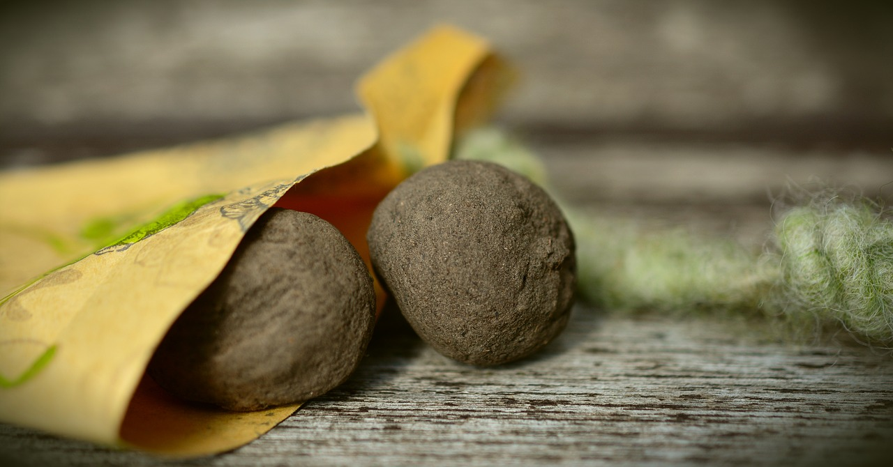 Make Your Own Seed Bombs