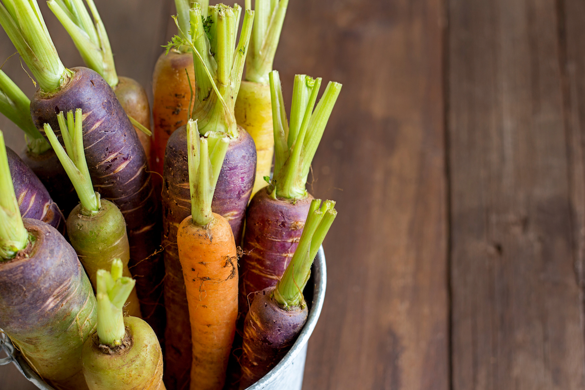Our Favourite Funky Veggies to Grow with Kids