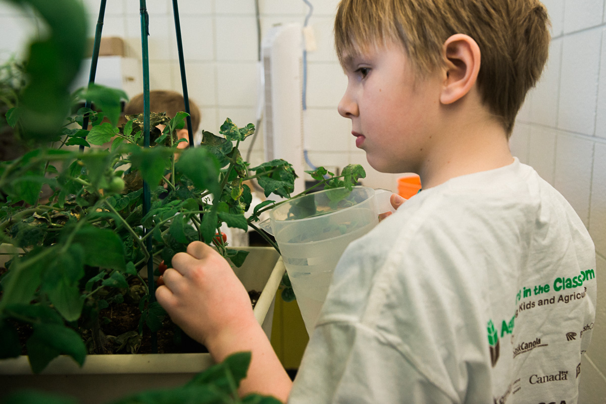 Our Top 8 Evidence-Based Reasons to Cultivate a Classroom Garden